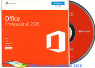 Cina Original Office 2016 Professional FPP, Microsoft Office Professional Plus 2016 DVD pabrik